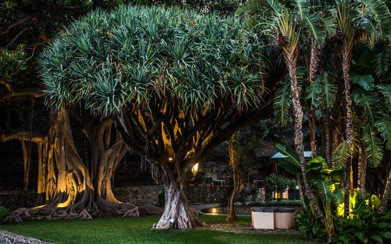 Parco della Magnolia